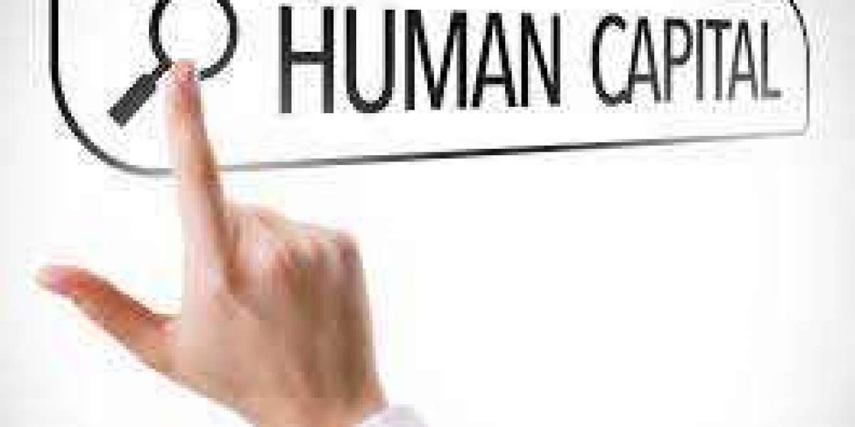 The Ultimate Guide to Human Capital: Everything You Need to Know